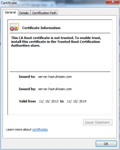 Set up WordPress - Self-signed certificate details
